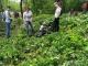 Волонтеры Таганрога поблагодарили депутатов Городской Думы